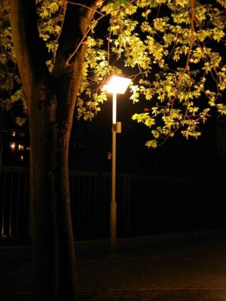 Oświetlenie zewnętrzne przy biurowcu przy ul. Orzeszkowej w Białymstoku